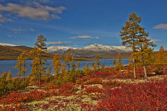 Autumn. Jack London's lake Royalty Free Stock Image