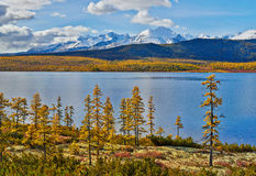 Autumn on Jack London's lake. Mountains in snow Royalty Free Stock Photos