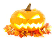 Autumn Jack o Lantern Stock Photo