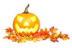 Autumn Jack o Lantern Royalty Free Stock Image