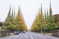 autumn Japan Zdjęcie Royalty Free