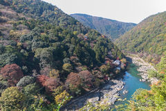 Autumn in Japan. The autumn in Arashiya turns the whole mountain to be a colorful scene Royalty Free Stock Images