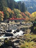 Autumn in japan Royalty Free Stock Photos