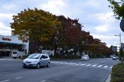 Autumn Japan le jaune rouge de couleur et vert Photographie stock
