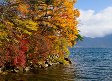Autumn in Japan Royalty Free Stock Photo