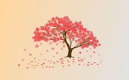 Autumn Japanese-esdoorn stock illustratie