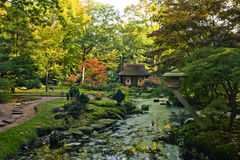 Autumn in japanese garden Royalty Free Stock Image