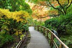 Autumn japanese garden Stock Images