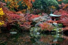 Autumn in the Japanese Garden. Royalty Free Stock Photo