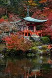 Autumn colour at Kyoto. Royalty Free Stock Images