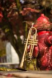 Jazz Trumpet Nature. Autumn jazz instrument trumpet standing alone in nature Royalty Free Stock Photography