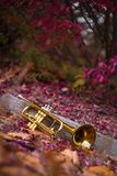 Jazz Trumpet Nature. Autumn jazz instrument trumpet standing alone in nature Stock Photo