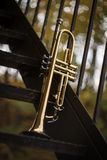Jazz Trumpet Nature. Autumn jazz instrument trumpet standing alone in nature Stock Images