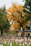 Autumn in a Jewish cemetery Stock Photography