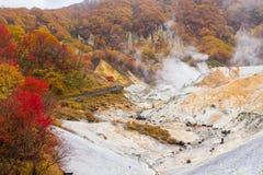 Autumn at Jigokudani hell valley, Hokkaido, Japan Stock Photos