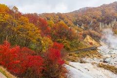 Autumn at Jigokudani hell valley, Hokkaido, Japan Royalty Free Stock Image