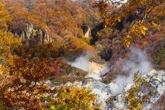 Autumn at Jigokudani hell valley, Hokkaido, Japan Stock Photo
