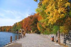 Autumn in Jilin. Quiet road during autumn season Royalty Free Stock Photos