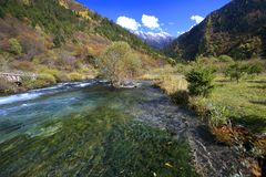 Autumn in Jiuzhaigou. Mountain stream and hills in autumn in Jiuzhaigou Stock Images