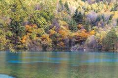 Autumn in jiuzhaigou, China Royalty Free Stock Image