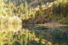 Autumn in jiuzhaigou, China Royalty Free Stock Photography