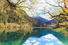 Autumn in jiuzhaigou, China Stock Photography