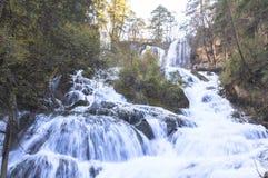 Autumn in Jiuzhaigou, China Royalty Free Stock Photo