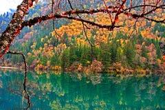 Autumn in Jiuzhaigou, Sichuan, China. Jiuzhaigou in Sichuan Province in western China, is a tourist destination Royalty Free Stock Photo
