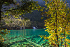 Autumn in Jiuzhaigou, Sichuan, China. Jiuzhai Valley or Jiuzhaigou National Park is located in the Aba Tibetan and Qiang Autonomous Prefecture of Sichuan Royalty Free Stock Images