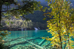 Autumn in Jiuzhaigou, Sichuan, China. Jiuzhai Valley or Jiuzhaigou National Park is located in the Aba Tibetan and Qiang Autonomous Prefecture of Sichuan royalty free stock photos