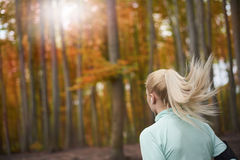 Autumn jogging. Dreamy weather for jogging alfresco stock photos
