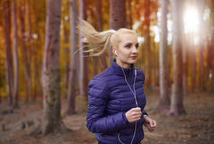 Autumn jogging. Jogging in autumn in the forest stock image