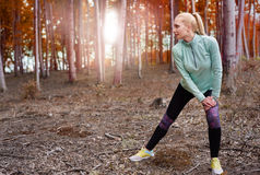 Autumn jogging Royalty Free Stock Photography