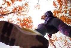 Autumn jogging Stock Photos