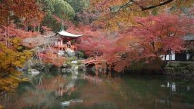 Autumn in Jojakko-ji Temple , Kyoto,Japan. Kyoto, Japan - NOV, 25 2013 : The Autumn in Jojakko-ji Temple , Kyoto,Japan stock footage