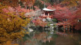 Autumn in Jojakko-ji Temple , Kyoto,Japan. Kyoto, Japan - NOV, 25 2013 : The Autumn in Jojakko-ji Temple , Kyoto,Japan stock video footage