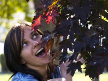 Autumn Joy Stock Image