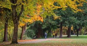 Autumn Joys Fotografie Stock Libere da Diritti