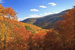 Autumn Kaaterskill Clove Stock Photo