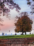 Autumn in Kalemegdan. This picture was taken in Kalemegdan, park which is a cultural asset of the country Royalty Free Stock Image