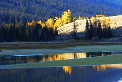 Autumn in kanas Stock Image