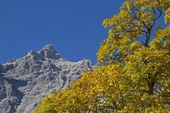 Autumn in Karwendel Royalty Free Stock Photos