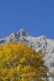 Autumn in Karwendel Stock Image