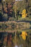 Autumn in Katowice Stock Images
