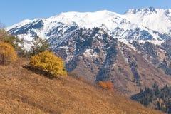Autumn in Kazakhstan mountain Stock Photo