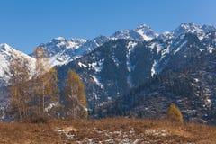 Autumn in Kazakhstan mountain Royalty Free Stock Image
