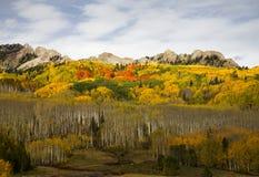 Autumn at Kebler Pass in Colorado. Autumn colors at Kebler Pass near Crested Butte, Colorado Royalty Free Stock Photos