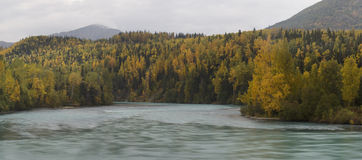 Autumn on Kenai River Stock Images