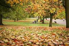 Autumn in Kensington Garden , London. People relaxing in a autumn park.(Kensington Garden, London royalty free stock photography