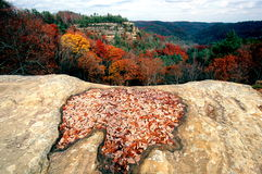 Autumn in Kentucky. View of autumn foliage from the top of Natural Bridge, Natural Bridge State Park, Daniel Boone National Forest in Kentucky Royalty Free Stock Image